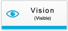 Vision(visible)